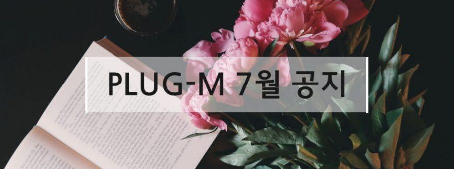 plugm_7